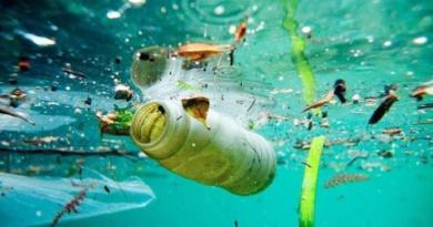 Día Mundial de los Océanos: 80% de la basura que hay en los océanos proviene de la tierra